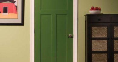 cvet-vhodnoy-dveri-01-9185444