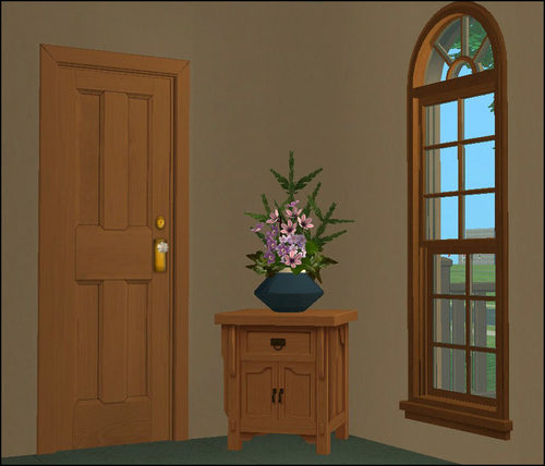 cvet-vhodnoy-dveri-05-6586732
