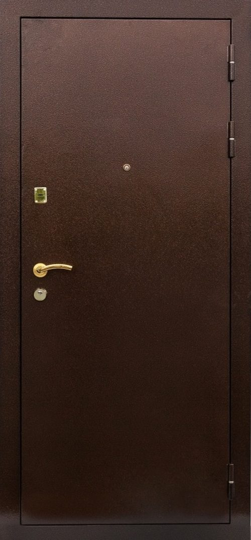 dveri-bastion-10-3246219
