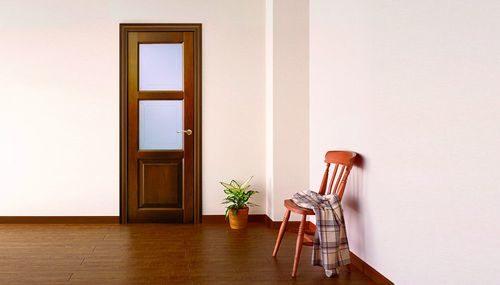 dveri-cveta-temnyj-oreh_10-5708258