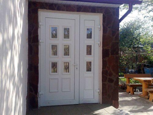 dveri-dlya-dachi_6-8190611