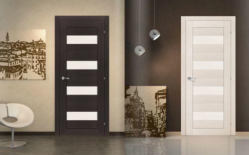 dveri-raznogo-cveta_7-1259004