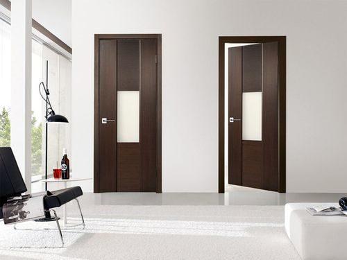 dveri-stil-modern_6-2149345