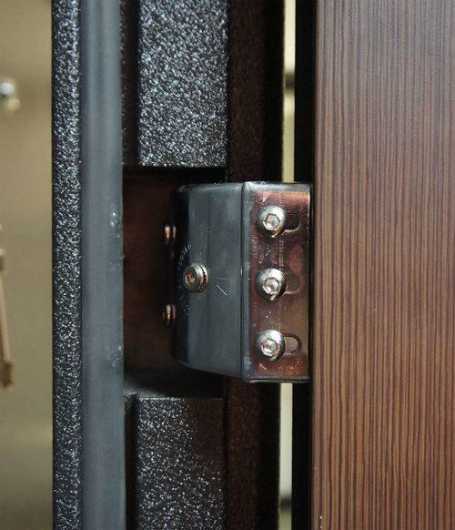 metallicheskie-dveri-venge_1-8685069