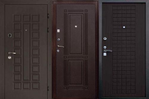 metallicheskie-dveri-venge_6-6221171