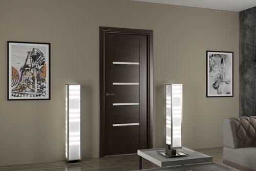 temnye-dveri-v-interere_11-9275861