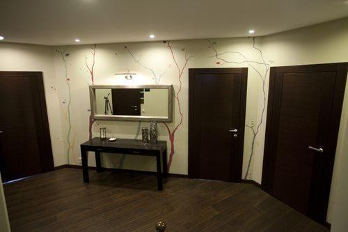temnye-dveri-v-interere_5-5743845