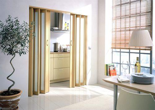 dveri-na-kuxnyu_4-2092447