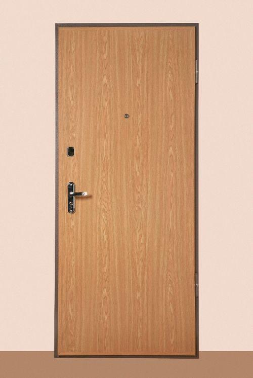 metallicheskie-dveri-ekonom_1-6605508