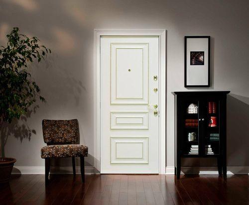 belye-metallicheskie-dveri_5-6590965