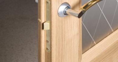 dveri-s-pritvorom-vozmozhnosti-i-opisanie-konstruktsii-9111243