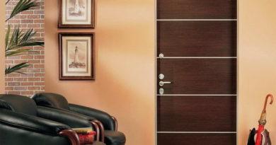 osobennosti-konstruktsii-stalnyh-vhodnyh-dverej-2596170
