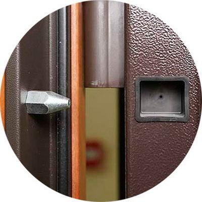 Пример противосъемных штырей во входных дверях (ригелей)